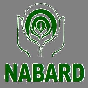 NABARD Officer  Gr A Online Form 2020
